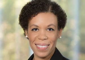 This You?  Diversity Matters, Part II:  So You've Hired a Chief Diversity Officer, Now What?