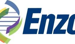 Board Directors Stopping the Steal? Enzo Biochem Flouts Shareholder Democracy